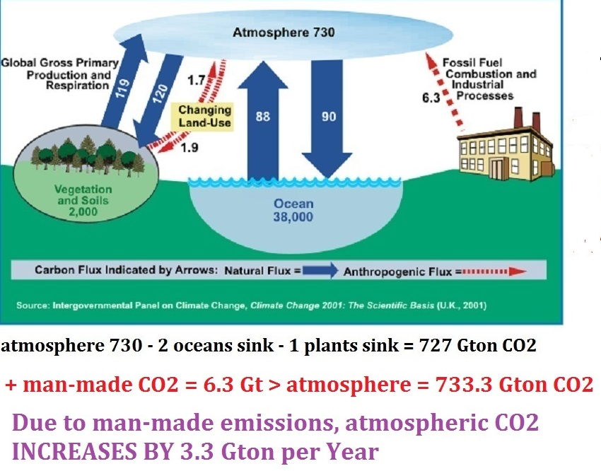 NEWcarboncycle2