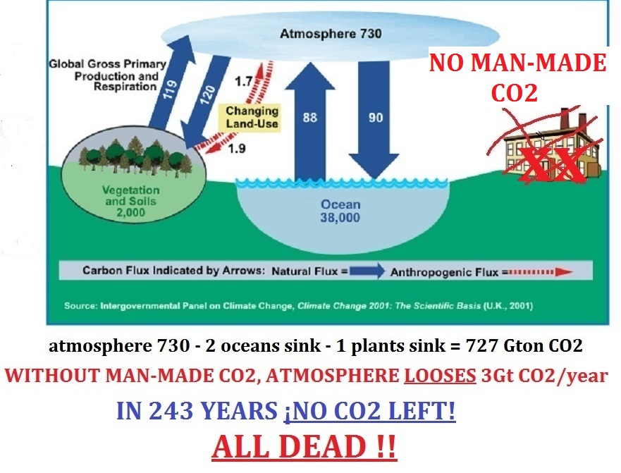 NEWcarboncycle5